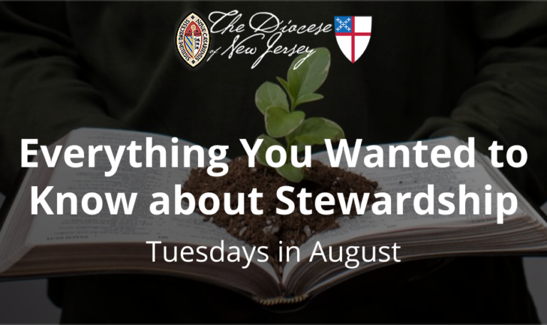 Everything You Wanted to Know About Stewardship